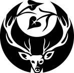 Skaeth's Wild Hunt Dice Pack
