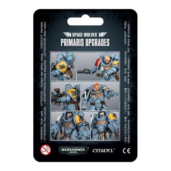 Space Wolves Primaris Upgrades