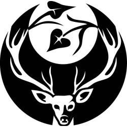Kitűző - Black Templars